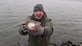 Ловля судака зимой с берега тяжелым джигом