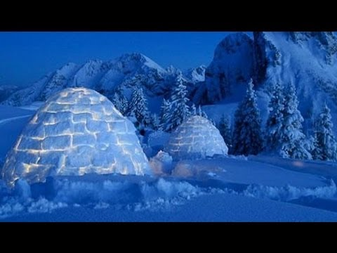 Frank Lloyd Wright or An Igloo? Sexy Homes on Airbnb