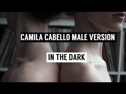 Camila Cabello - In The Dark (Male Version)