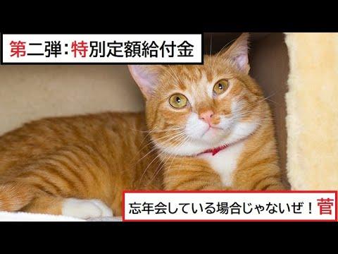 【隠居TV】第二弾:特別定額給付金「総理!8人で忘年会するまえに金をだせ!」