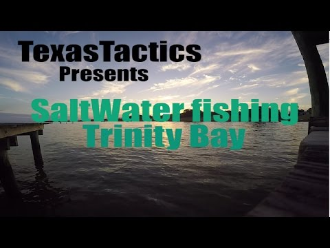 SaltWater Fishing (Trout/Redfish) - Trinity Bay