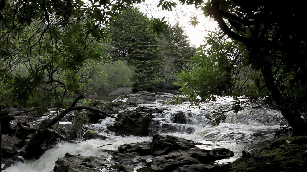 Relax Tranquil Nature Without Music Calming Waterfall
