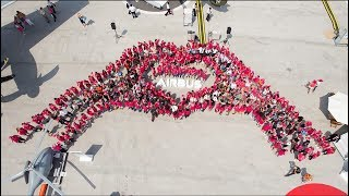 Airbus Guiness World Record Photo