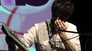 Gruff Rhys - Candylion-Sensations In The Dark