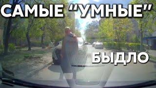 """Подборка САМЫХ """"УМНЫХ"""" водителей #372"""