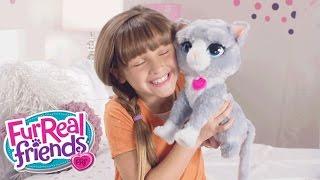 FurReal Friends Peru - 'Bootise' Comercial de TV