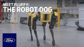 Robo-Dogs Scan Ford Plant