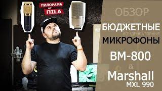 микрофон! Обзор бюджетных микрофонов BM 800 и Marshall MXL 990 от ПИЛОРАМА