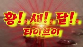[반수생거북] 커먼머스크터틀! 달콤 9월엔 어떤 사진들…
