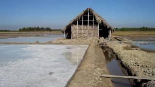 Vietnamese Salt Farming