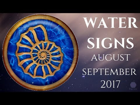 WATER SIGNS August/September Twin Flame Soul Mate Divine Love Reading