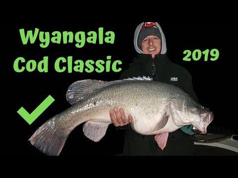 Lake Wyangala Murray Cod Classic 2019