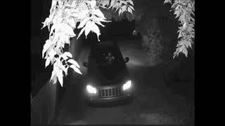 Female Vehicle Thief
