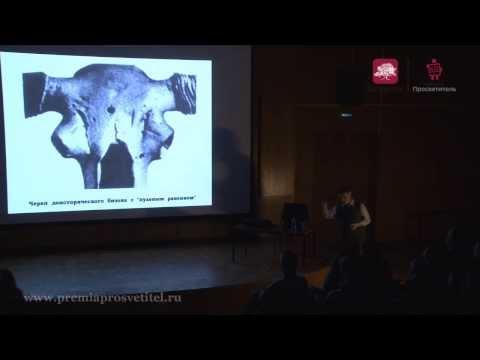 Владимир Сурдин: Поиски внеземных цивилизаций