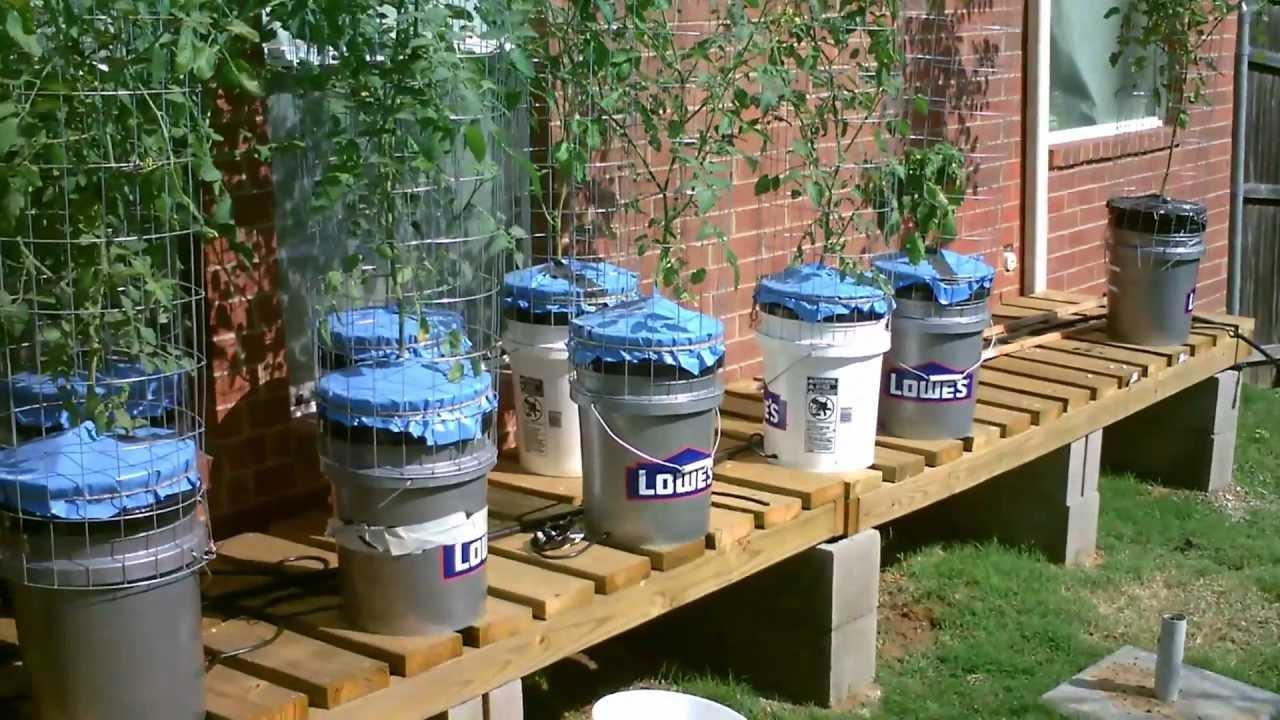 TXBF1 Sub-Irrigated Planter - TXBF1 Sub-Irrigated Planter - YouTube