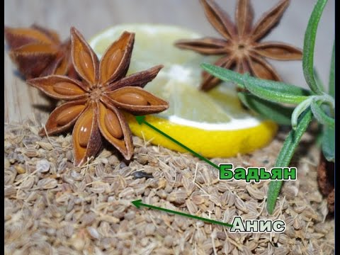 Анис и бадьян - сходства и различия пряностей (Anise and star anise)