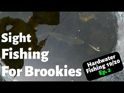 Ice Fishing Maine, 2019-2020 Brook Trout Ep. 2