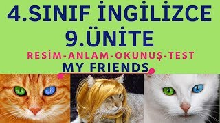 4. SINIF İNGİLİZCE 9. ÜNİTE KELİMELER   MY FRIENDS
