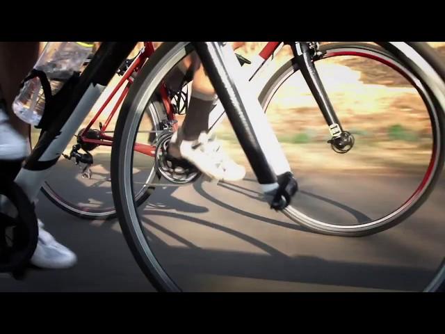 Tifosi Optics - Get It - Bike/Run