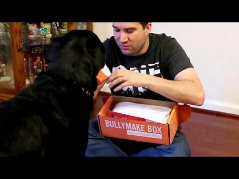 bullymake-unboxing-december-2018-|-large-dog