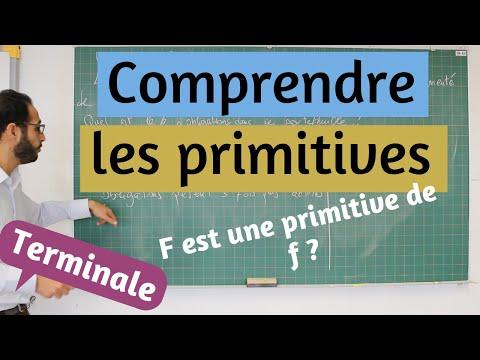 Primitives - Le cours