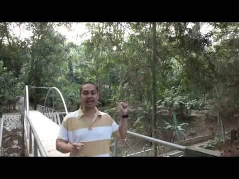 video-taman-hutan-raya-djuanda-tempat-wisata-di-bandung