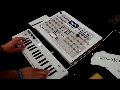 Waldorf Kyra Synthesizer At SynthPlex 2019