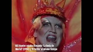 Priscilla reina del desierto pelicula completa castellano