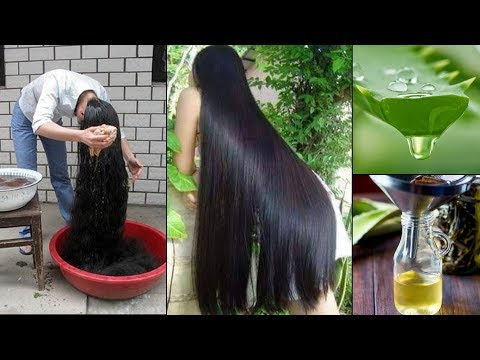 Amazing Homemade Aloevera Hair Oil for Double Hair Growth  | Aloevera Gel to get Long hair