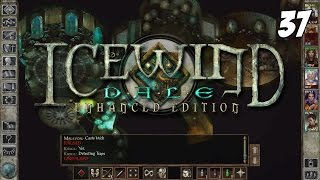 Icewind Dale: Enhanced Edition #37 - Poquelin - Gameplay Walkthrough PC 1080p