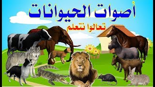 أسماء وأصوات الحيوانات للاطفال   تعليم أصوات الحيوانات للأطفال باللغة العربية