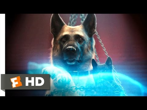 Cats & Dogs: The Revenge of Kitty Galore #6 Movie CLIP - Kitty's Evil Plan (2010) HD