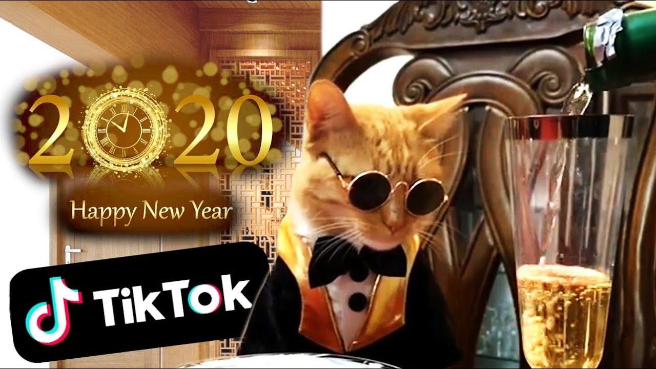 Tik Tok Memes & Happy New Year 2020! - YouTube