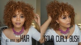 All About This Hair:  Gold Curly Bush REVIEW