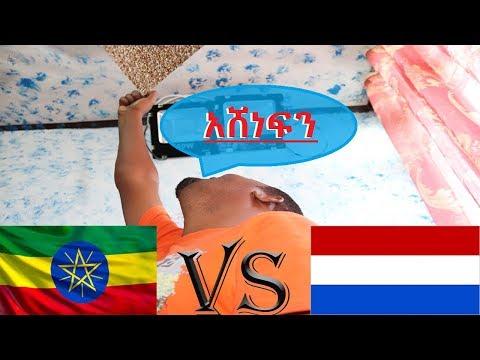 የጤፍ ግብግብ በኢትዮጵያ እና በኒዘርላንድ /Ethiopia confirms legal teff 'war' with Dutch company over patent .