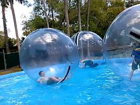 Water Balls At The Central Florida Zoo