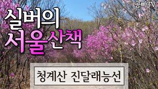 [3월 추천 서울 여행] Seoul Trip 청계산 C…
