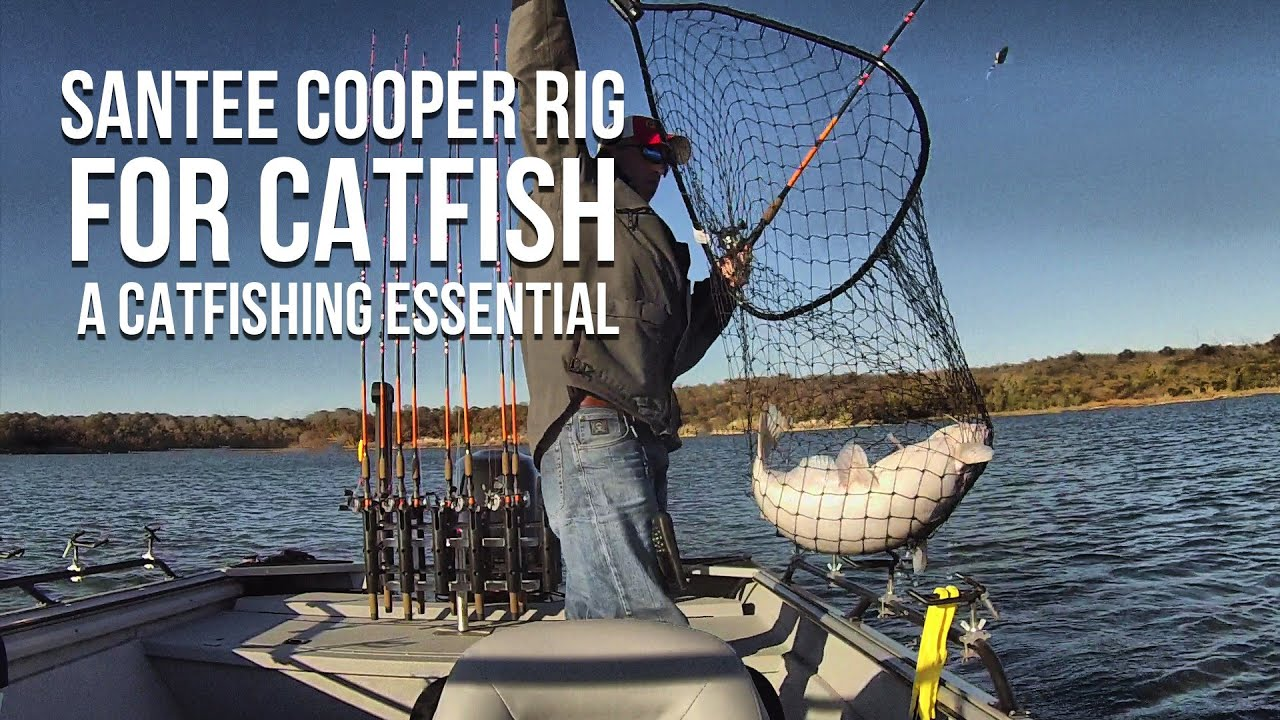 Santee cooper rig for catfish a catfishing essential for Santee cooper fishing report