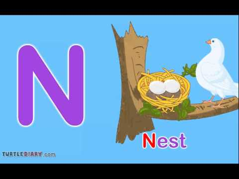 Toddler Words Words Starting With N