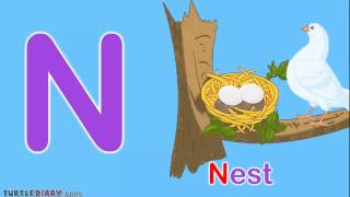 Toddler Words | Words Starting With N