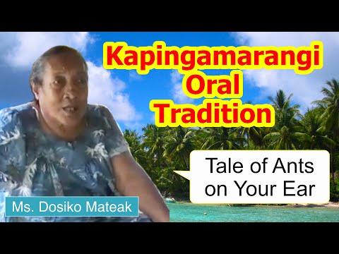 Tale of ants on your ear, Kapingamarangi Atoll