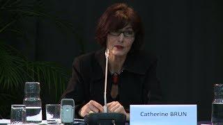 C. Brun - Histoire et mémoire(s) de la guerre d'Algérie - 2013-01