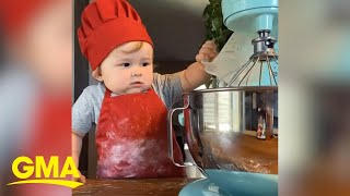 This adorable one-year-old home cook has over 1.5 million Instagram followers | GMA Digital