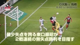 リーグ戦5戦負けなしのG大阪がアウェイ戦今季初勝利を狙う鳥栖と激突 ...