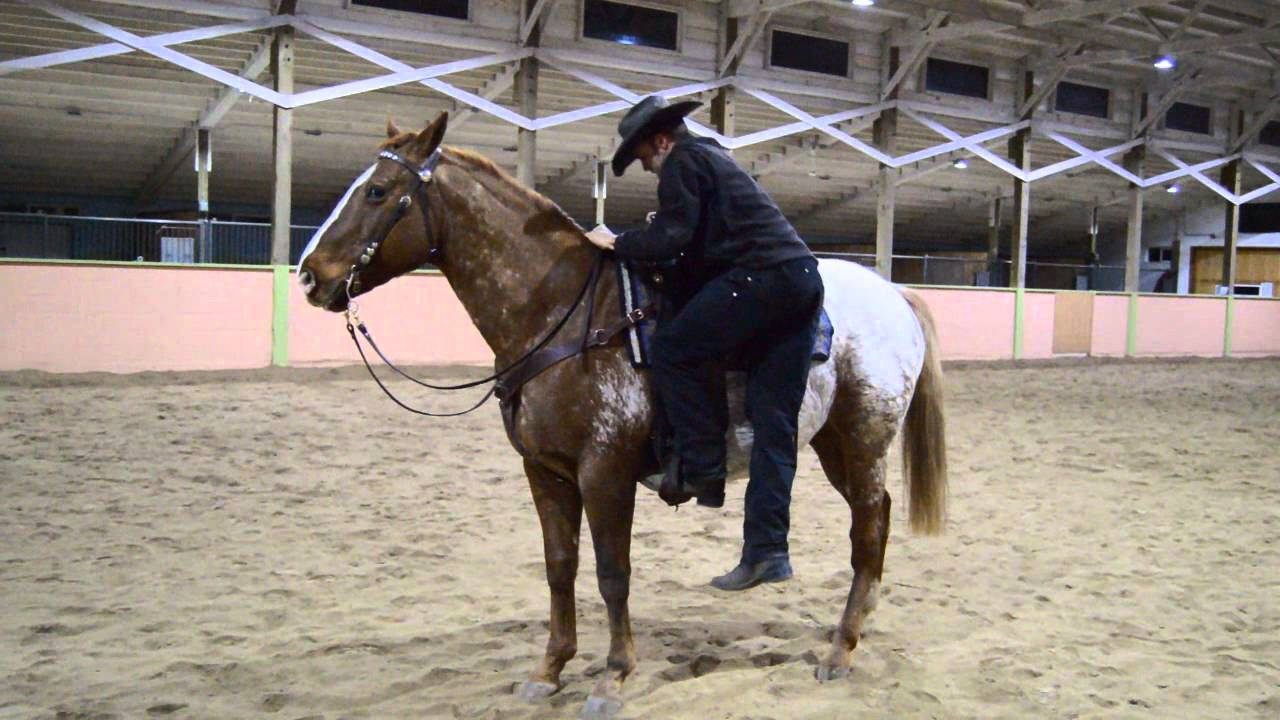 how to dismount from a horse