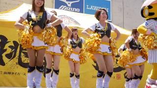 Tigers Girls ノーカットダンスステージ