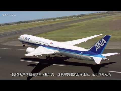 飞机胸口上的激凸,省了机场几十米的跑道,让爱车的尾翼不再只是摆设