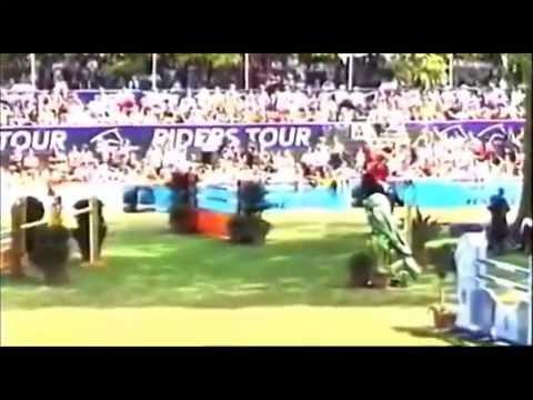 STAKKATO GOLD: Hannover jumping stallion, www.equine-evolution.com