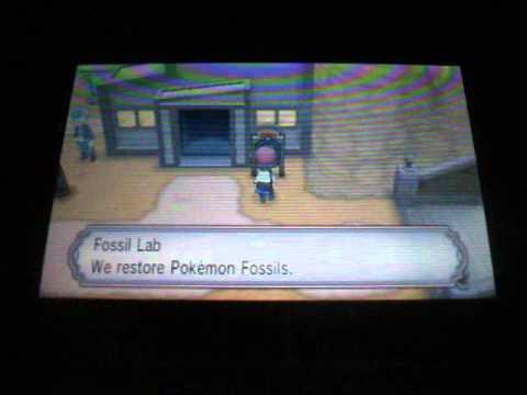 Amber Fossils Pokemon