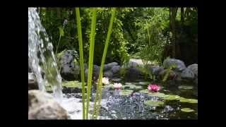Ландшафтный дизайн своими руками. Частный сад.(Ландшафтная компания